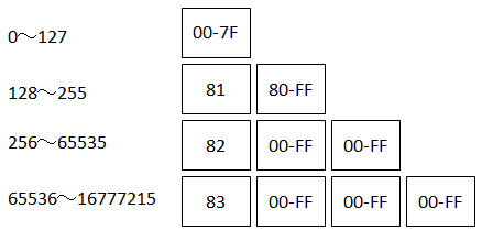 length-asn1.jpg